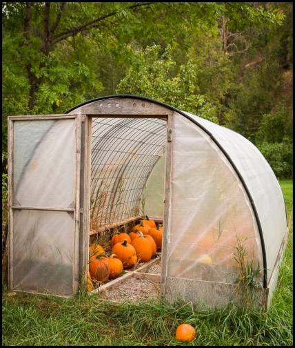 hoop house (nj)