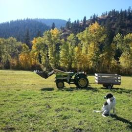 coda and tractor 2 insta sm