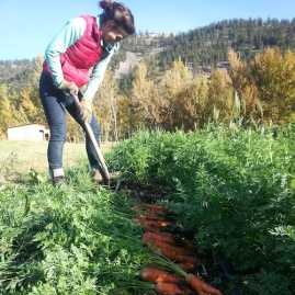 holly c diggin carrots insta sm